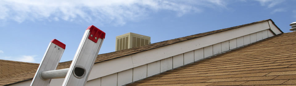stormschade op dak